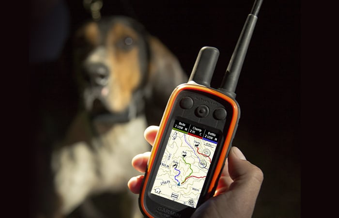 dog tracking device alpha