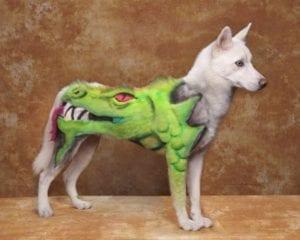 crazy dog haircuts - dragon