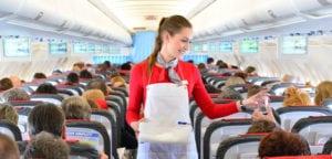 flight attendant requirements serving