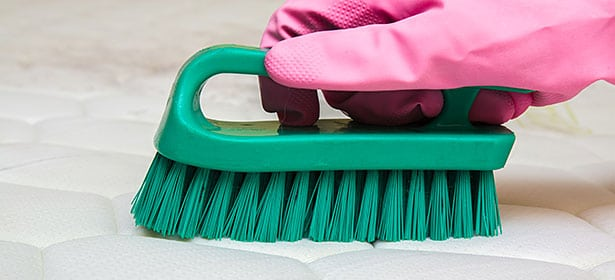 how to clean a mattress - scrub it