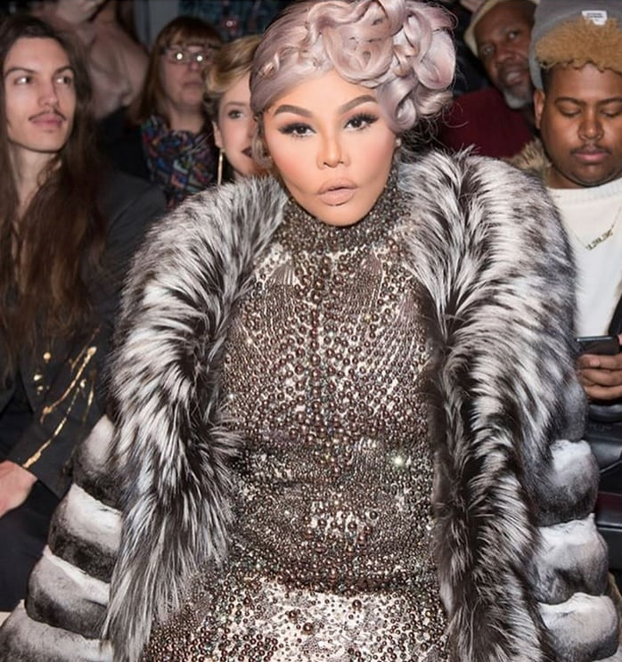 Lil Kim unrecognizable famous people