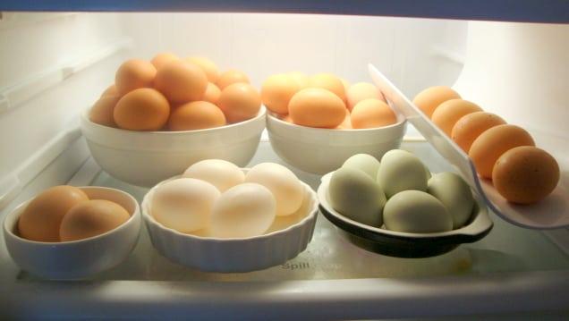 best refrigerator temperature eggs