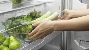 best refrigerator temperature fruit vegetable food storage