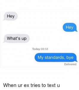 funny break up texts standards