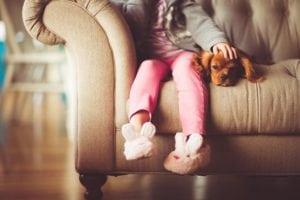 New dog owners: set boundaries
