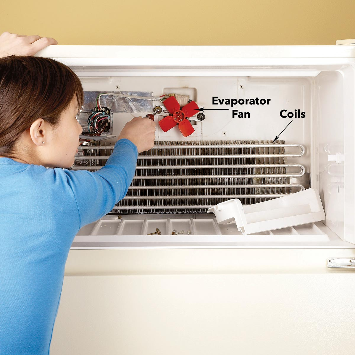refrigerator repairevaporator fan and coils