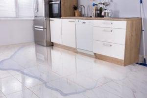 refrigerator repair leaky fridge