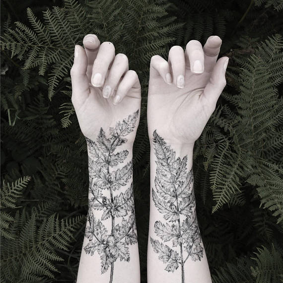 temporary tattoos - fern