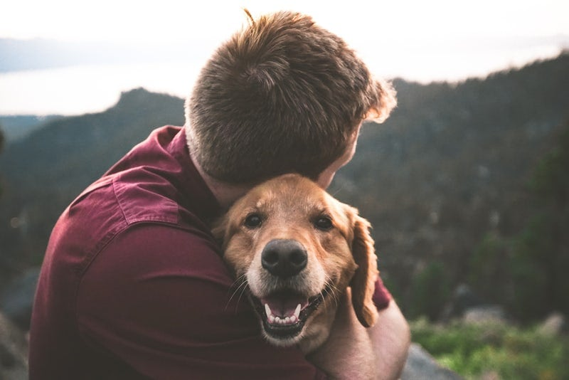 Best pet insurance companies owner and dog hug