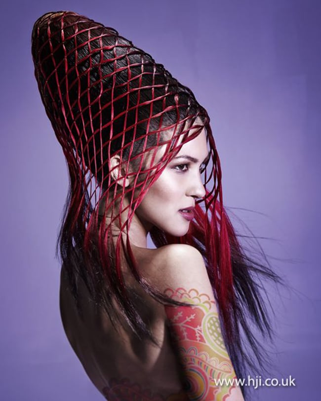 hair art with red netting