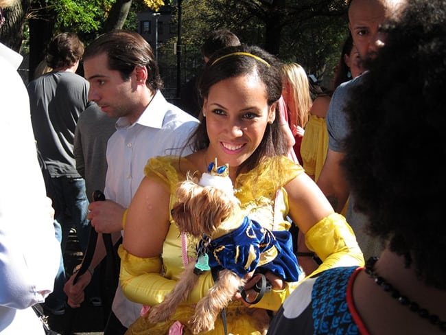 beauty and the beast pet and owner halloween costumes