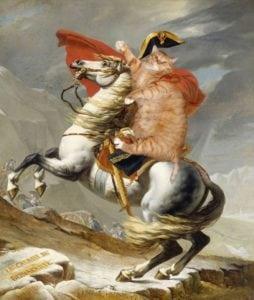 funny cat art napoleon jacques louis david
