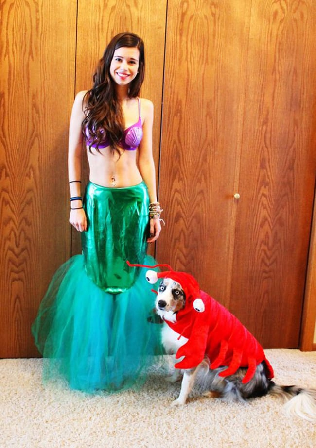 halloween costumes for pet and owners - the little mermaid