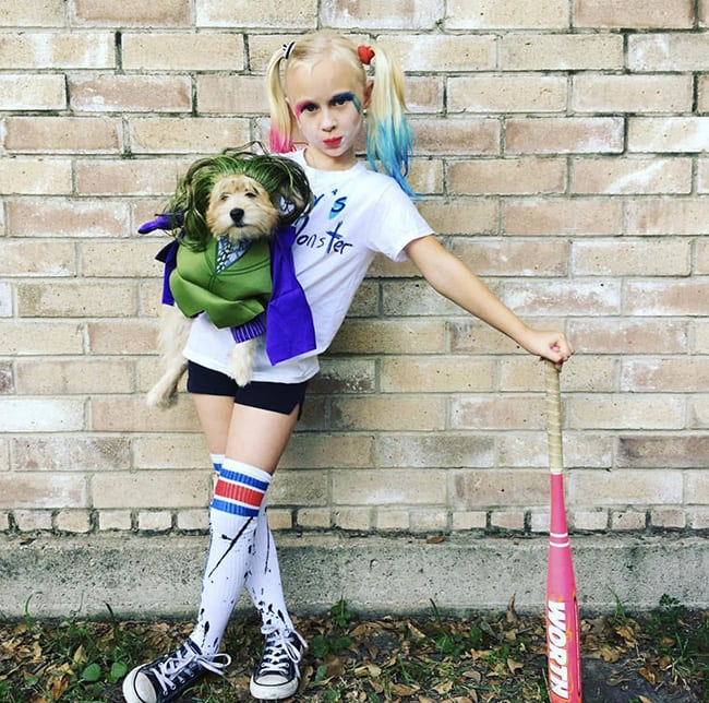 pet and owner halloween costumes - joker and harley quinn
