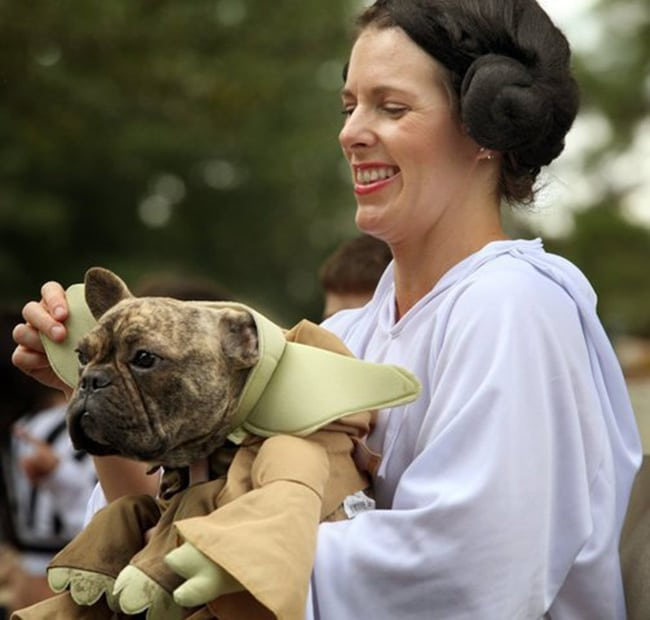 pet and owner halloween costumes - star wars