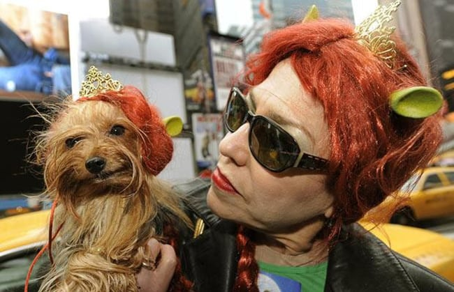 halloween cotumes for pet and owners - shrek and princess fiona