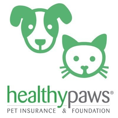 Healthy Paws Pet Insurance Review