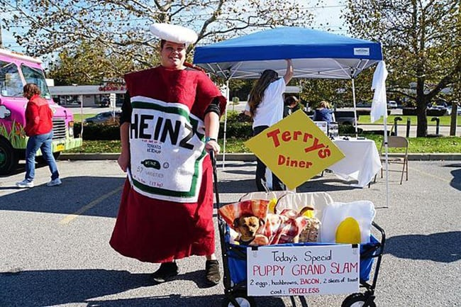 ketchup and hot dog halloween costumes for pet and owners