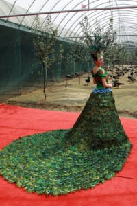 most expensive wedding dresses the peacock dress