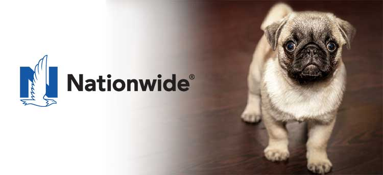 Nationwide Pet Insurance Pug Puppy; Nationwide Pet Insurance Review