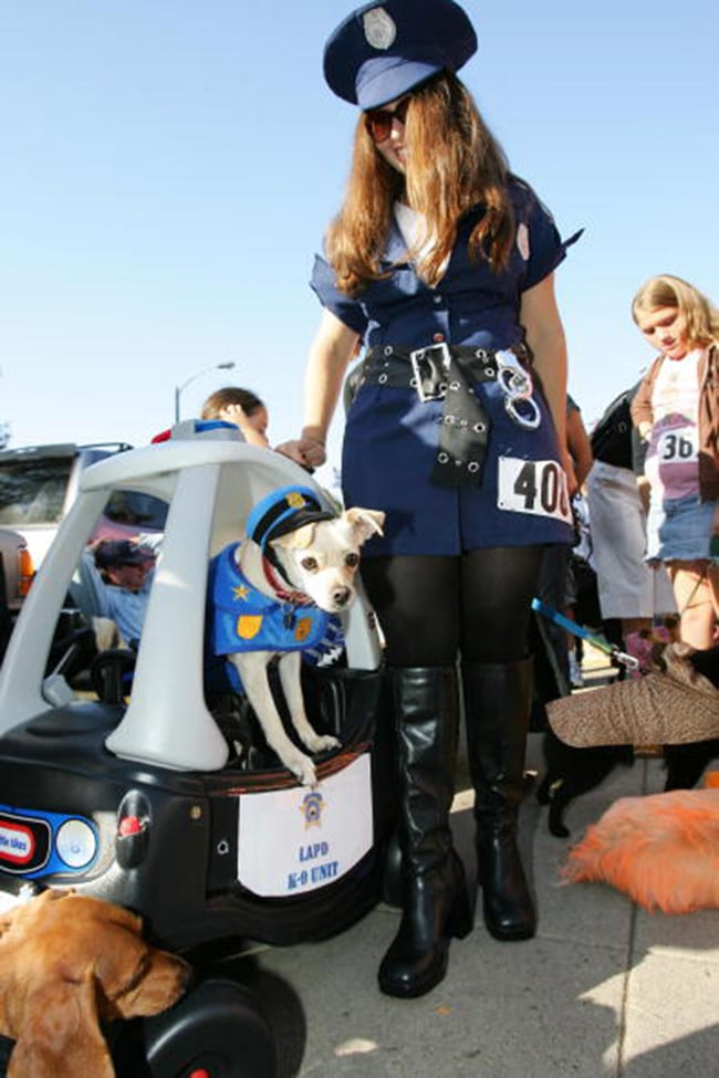 Police pet and owner halloween costumes