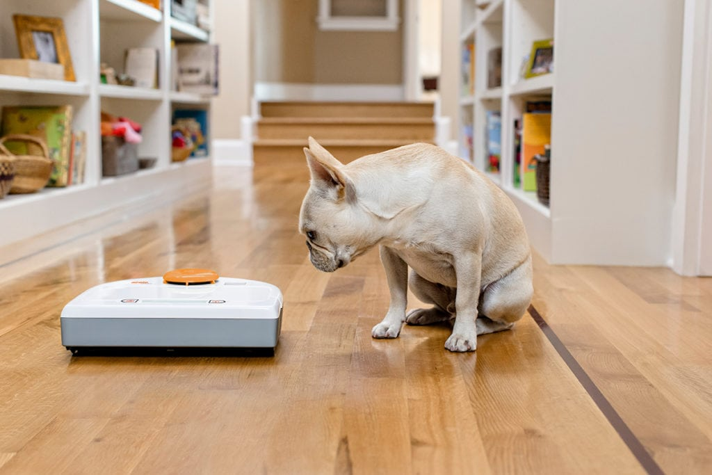 robot vacuums for pet hair | neato robot vacuum