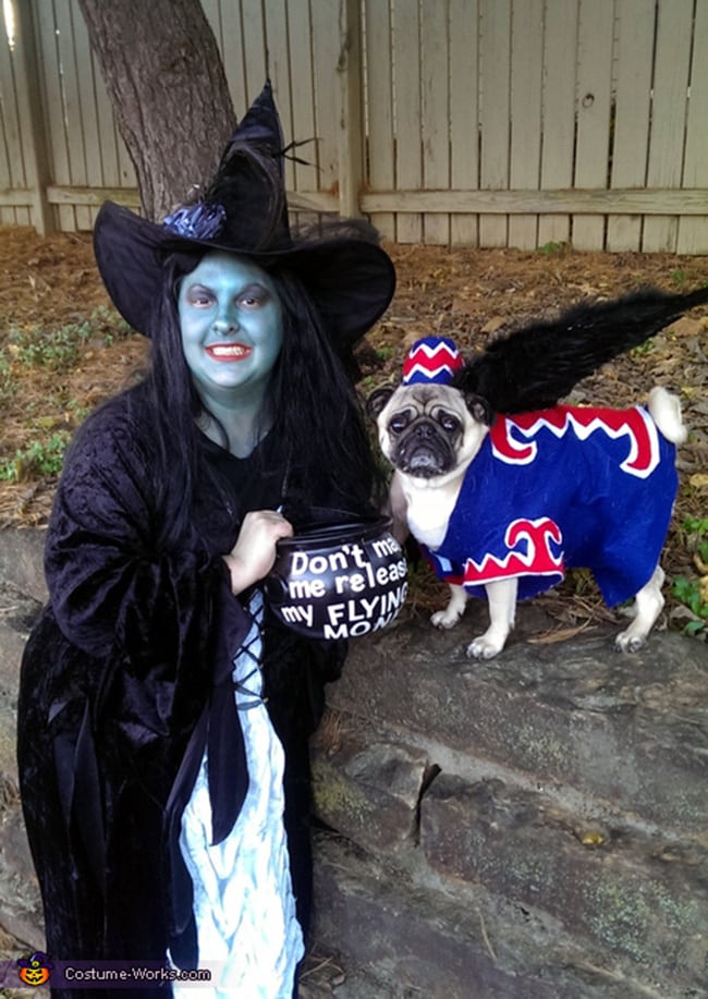the wizard of oz owner and pet halloween costumes