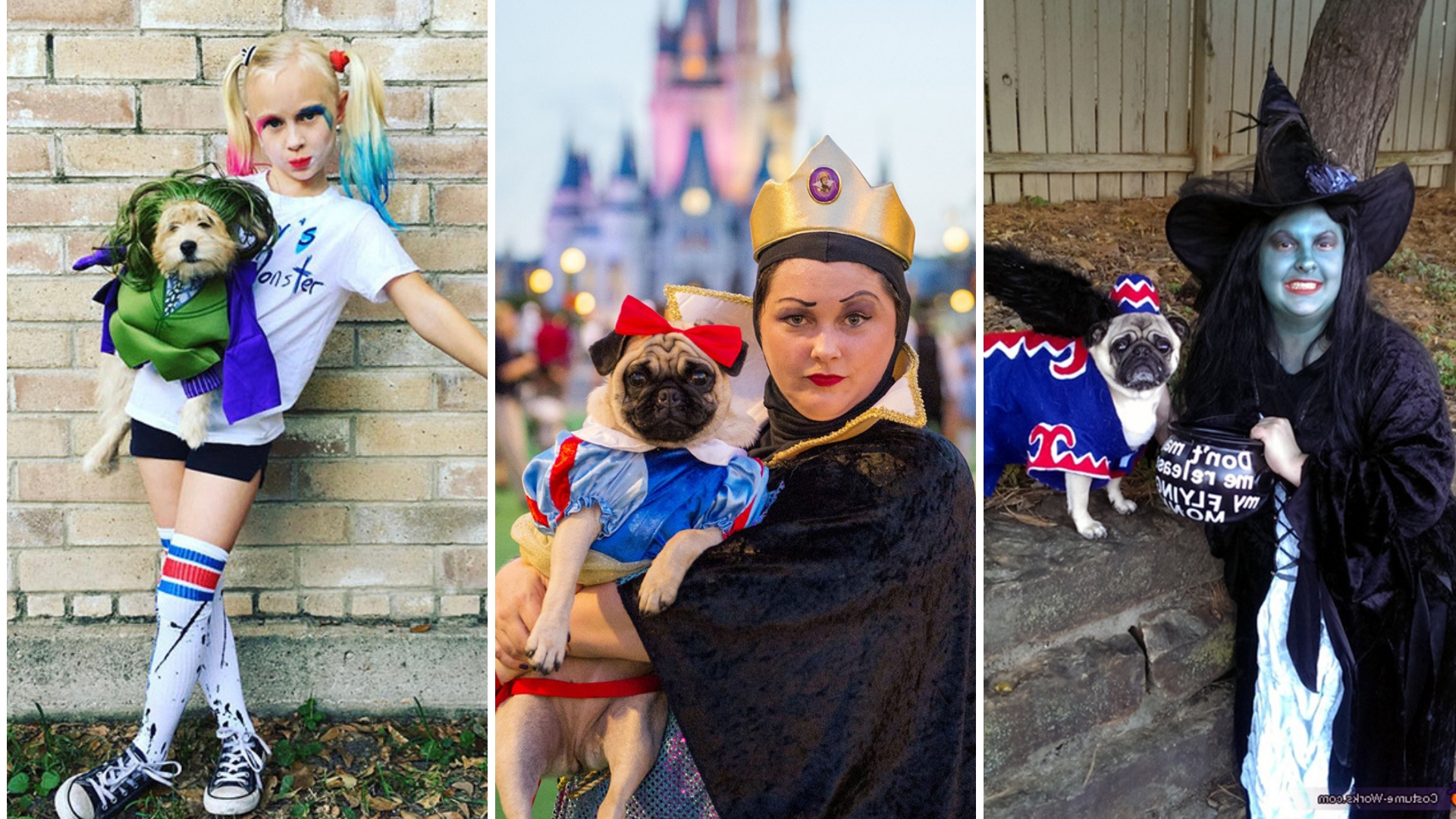 Petrifying Pets: Matching Pet And Owner Halloween Costumes