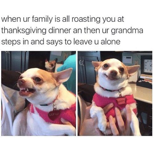 funny-thanksgiving memes grandma