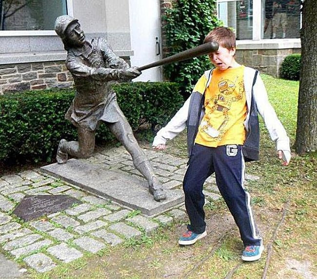 hilarious photos - bat to the face