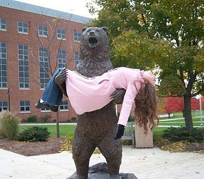 hilarious photos - captured by bear