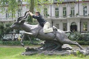hilarious photos - riding antelope