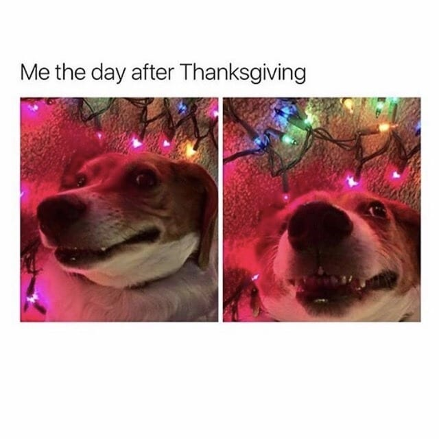 thanksgiving memes after thanksgiving