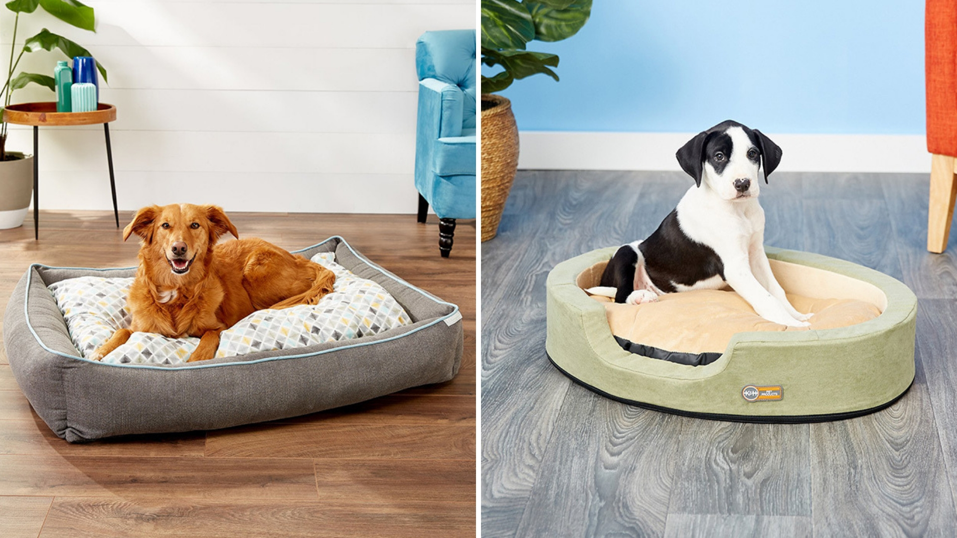 The 10 Best Dog Beds for 2020