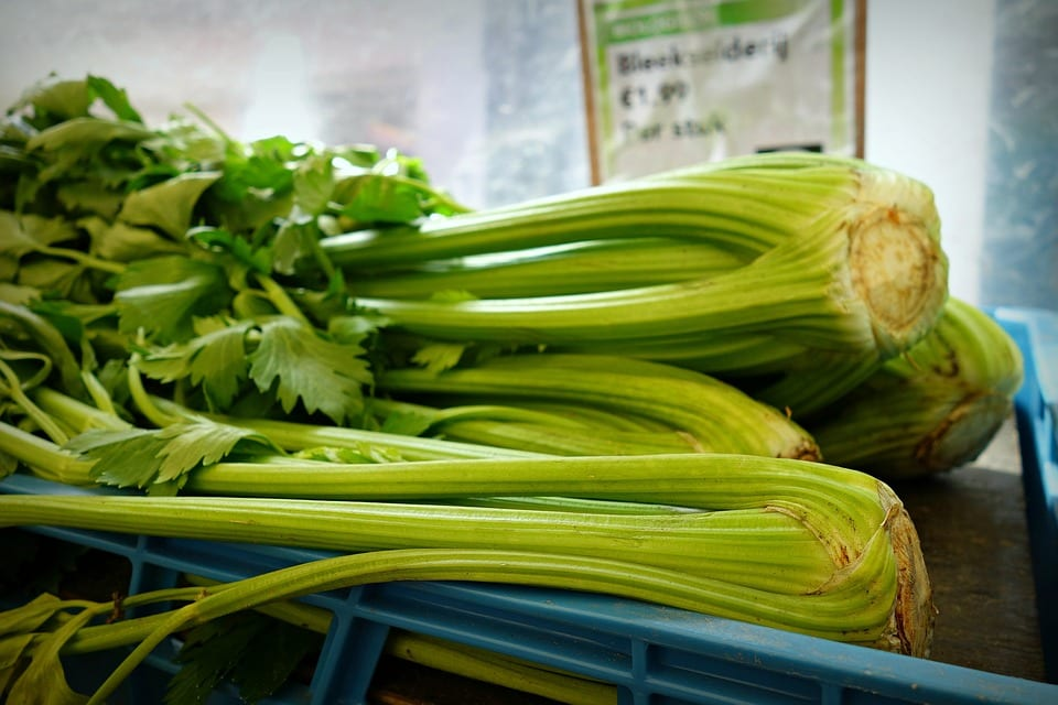 a bunch of celery zero calorie foods