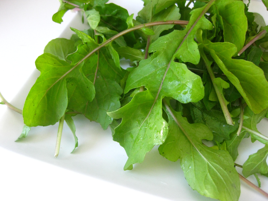 a bunch of zero calorie foods arugula