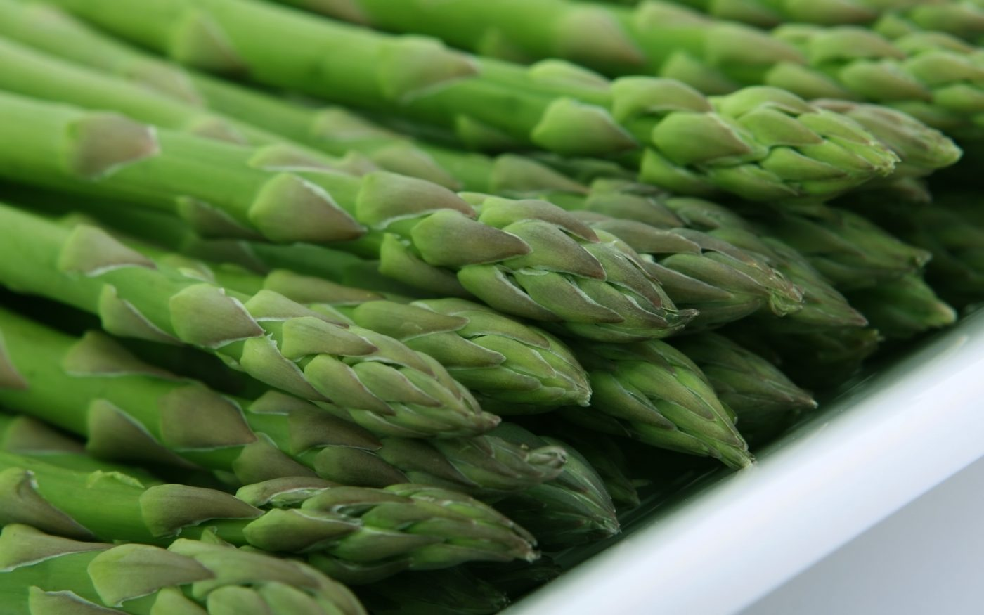 asparagus bunch a zero calorie food