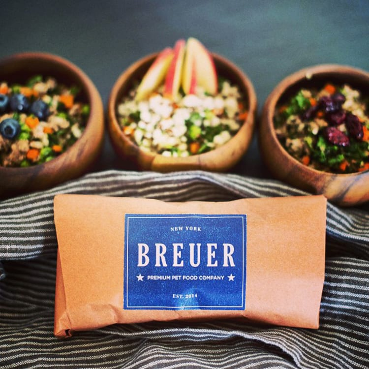 one ofthe best dog food delivery companies breuer meals in bowls