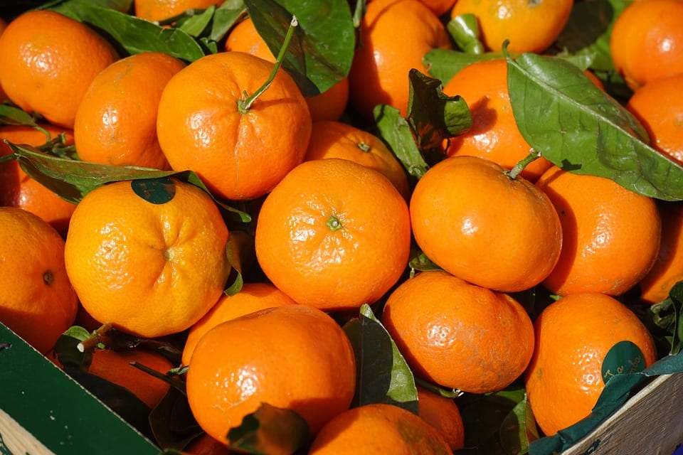 clementines a zero calorie food