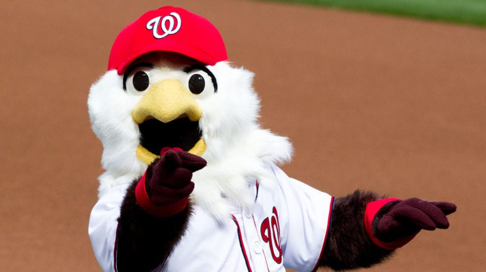 screech washington nationals