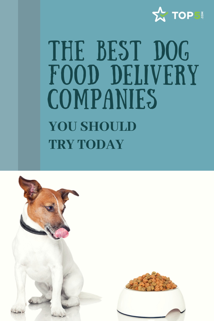 the best dog food delivery companies you should try today