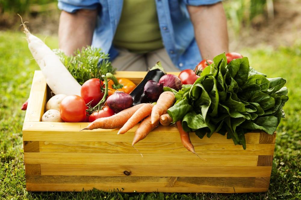 20 Almost Zero Calorie Foods