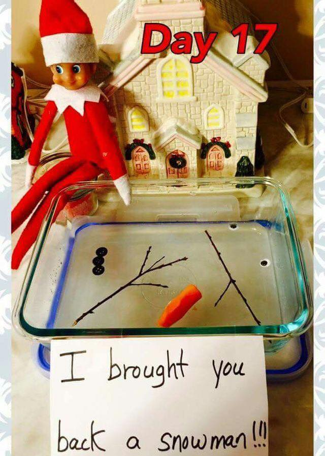 The elf tried to bring a snowman back from the North Pole