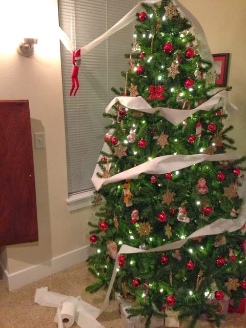 The Elf rolled the Christmas tree with toilet paper