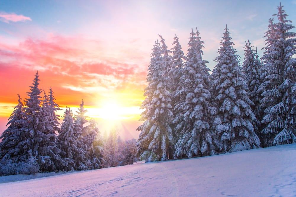 Top 5 Winter Weekend Trips in USA
