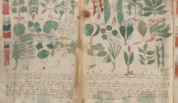 unsolved mysteries voynich manuscript