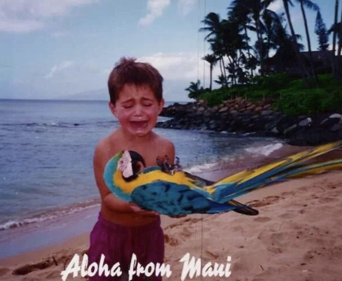boy holding parrot and crying on vacation