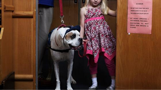 deaf dog story karl and girl