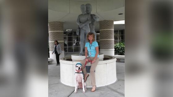 deaf dog story trainer 2
