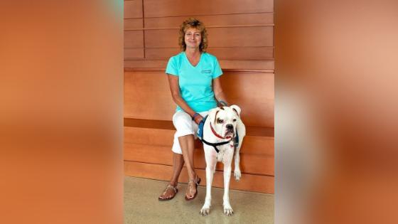 deaf dog story trainer